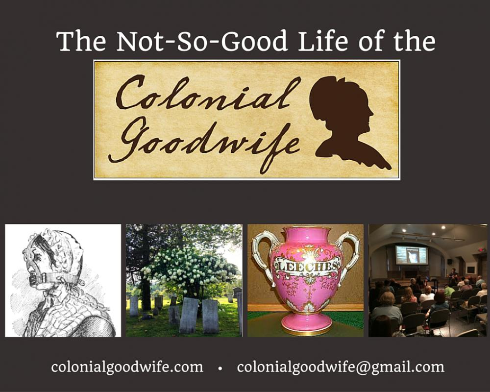 The Not-So-Good Life of the Colonial Goodwife Perhaps women need to be reminded of how far we've come in order to see how far we still can go. Discover what life was really like for New England's colonial women - because we've always been curious about: menstruation, sex & birth control, childbirth, sickness & medicine.  For instance, in an era when underwear hadn't been invented, what did women do when they had their periods? What were early American birth control methods? It was suggested that women try jumping backwards seven times after intercourse to expel sperm, drink water that blacksmiths used to cool metals, or insert a mixture of dried crocodile dung and honey into the vagina.  In 2011, Velya Jancz-Urban and her family bought a foreclosed farmhouse in Woodbury, Connecticut, unaware of what the house would reveal. Behind the walls, surprises and secrets waited to be exposed.  This became the spark for the novel, Acquiescence. Moving into this 1770 farmhouse ignited Velya's interest in the colonial era. While researching her novel, she became obsessed (in a good way) with colonial women. In Velya's entertainingly-informative presentation, The Not-So-Good Life of the Colonial Goodwife, even history buffs will learn a thing or two. The Not-So-Good Life of the Colonial Goodwife not only makes audience members laugh and grimace, but it also honors our foremothers. It's not about quilting bees and spinning wheels - it's an interactive presentation about the little-known issues faced by New England's colonial women. Ms. Jancz-Urban has traveled throughout New England presenting to libraries, historical societies, women's groups, and conferences, and has upcoming university, book festival, and women's history month events scheduled. She regularly hosts book club gatherings at her 1770 Connecticut farmhouse, the primary setting of her novel.  www.colonialgoodwife.com AUTHOR BIOGRAPHY: Velya Jancz-Urban is a teacher, author, former Brazilian dairy farm owner, and exp